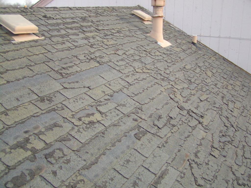 Shingles For Your Home Pacific Crest Inspections