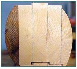 wood_cutaway