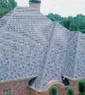 fancy roof with shingles