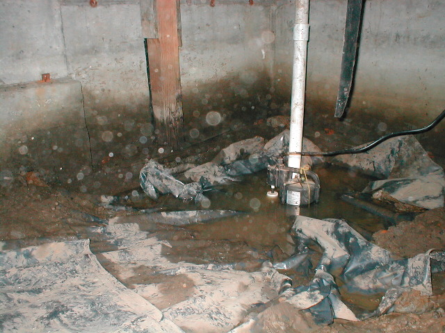 sump pump sitting in pool of water