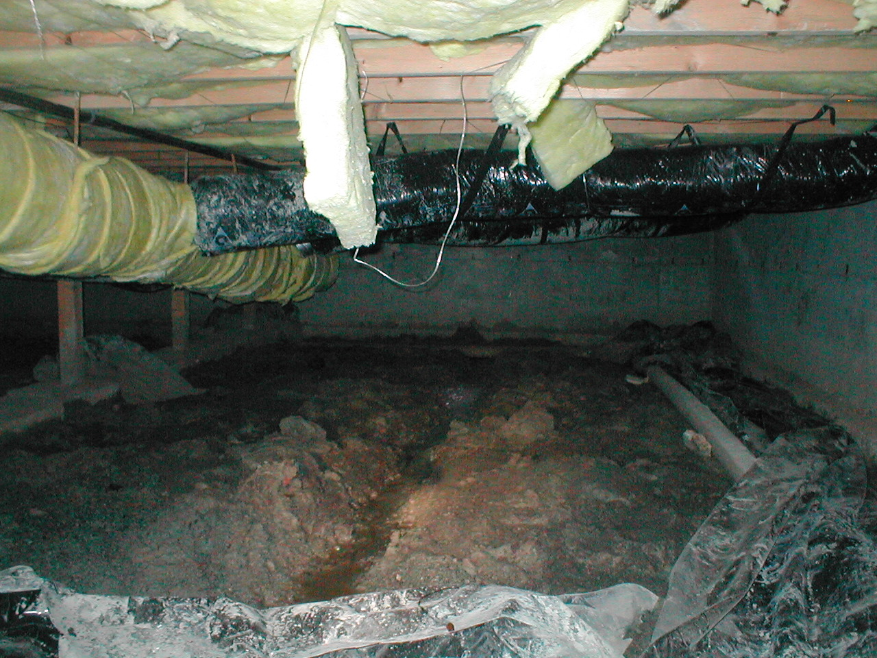 Crawl space inspections pacific crest inspections for Concrete in crawl space