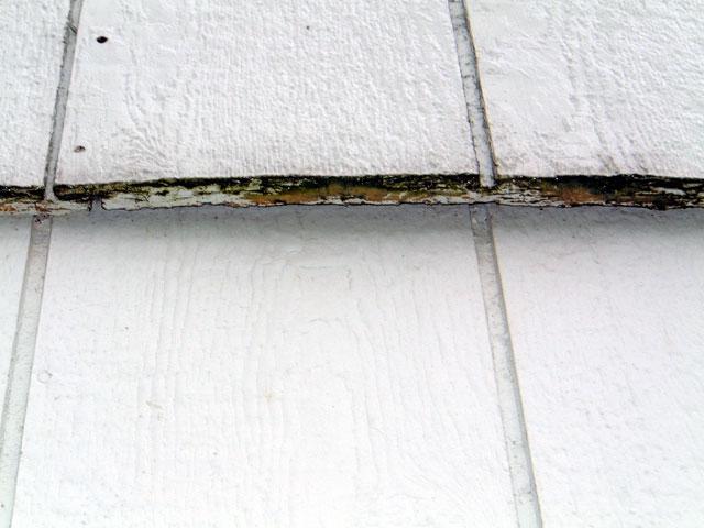lp siding bottom edge rot